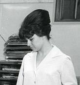 1960 beehive