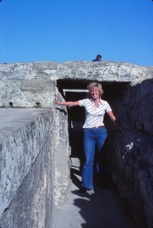 Alison Pont du Gard